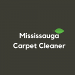 Mississauga Carpet Cleaner